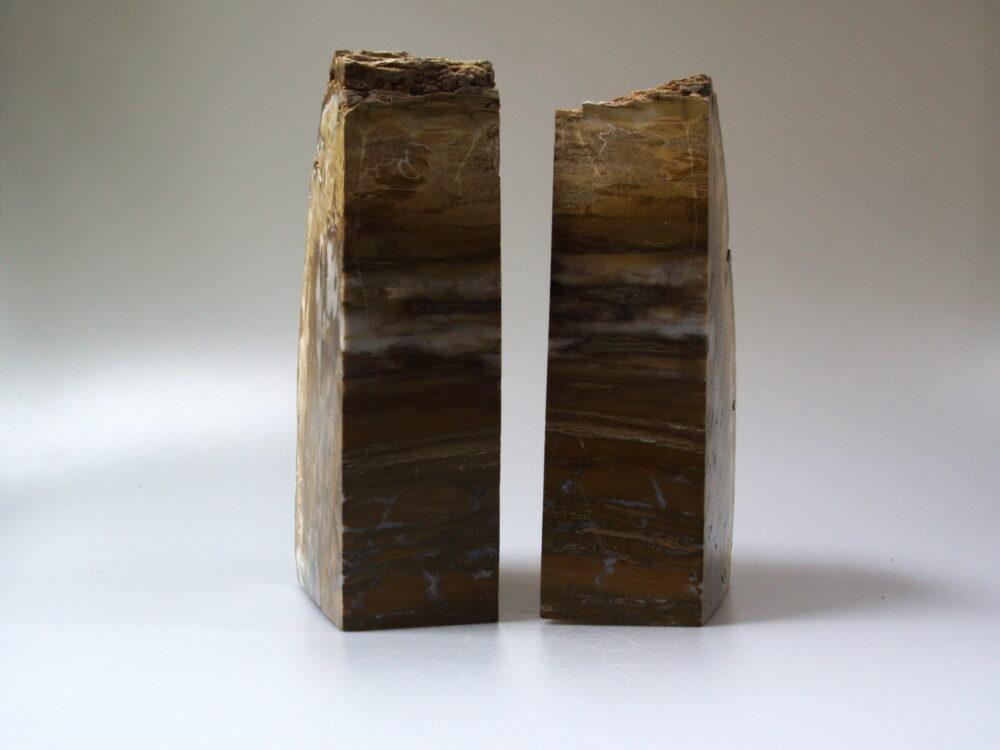 1 Boekensteun van versteend hout xxl 21 cm hoog